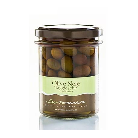 Olive Nere Taggiasche in Salamoia